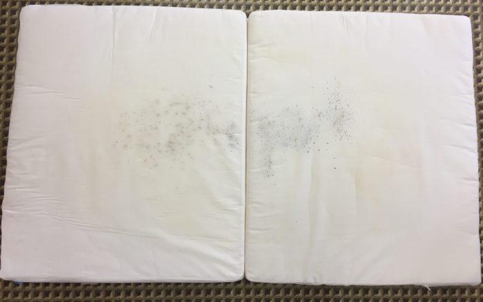 布団のカビ before&after